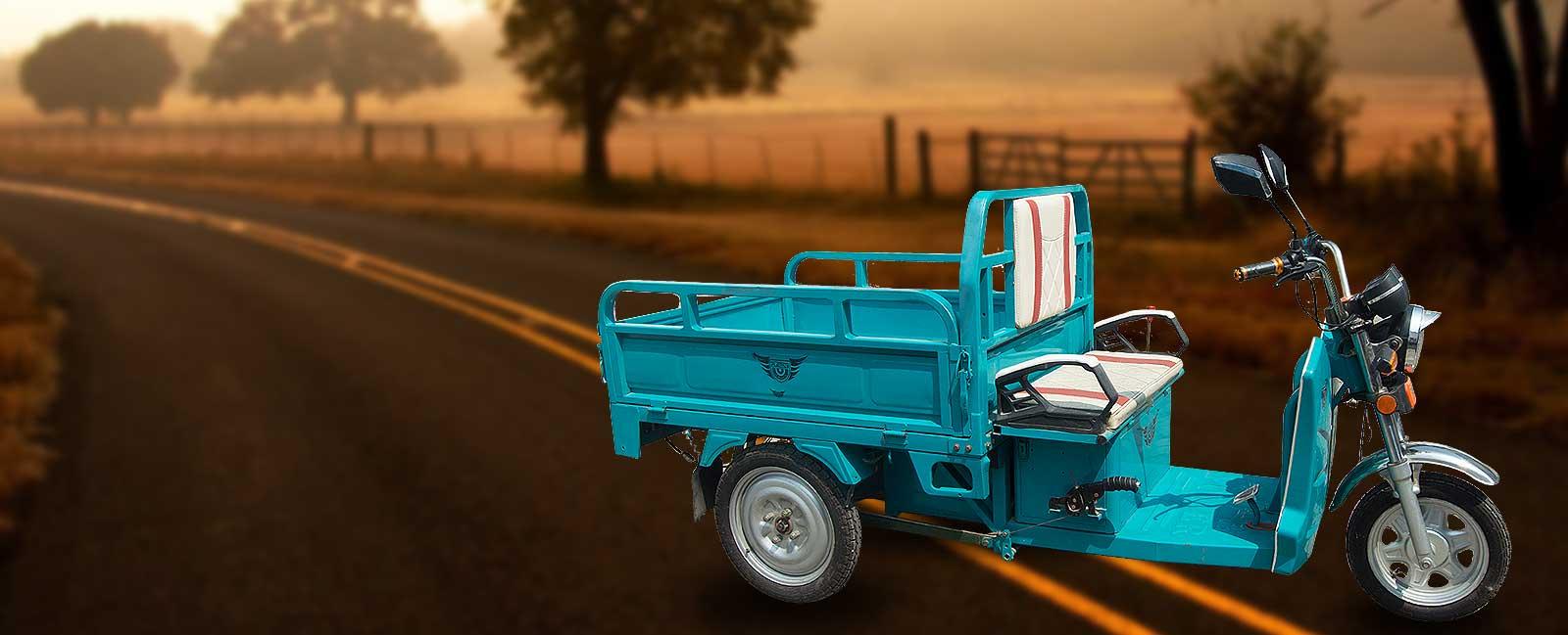 Plaudit <span>E Cargo Rickshaw</span>