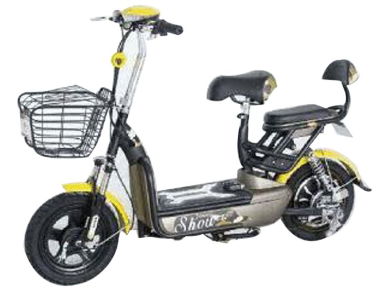 Plaudit e-Cycle I